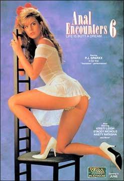 Anal Encounters 6: Life Is Butt A Dream | Анальные Столкновения: Жизнь Это Мечта о Заднице (1991) VHSRip