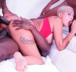 Lolly Glam enjoys african champagne and gets 2 cocks in the ass with anal fisting IV519 (2020) HD 2160p