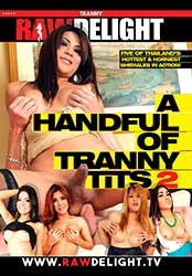 A Handful Of Tranny Tits 2 | Горсть Сисек Транссексуалов 2 (2017) WEB-DL