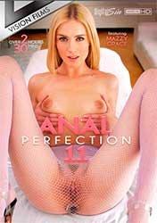 Anal Perfection 11   Анальное Совершенство 11 (2020) WEB-DL