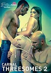 Carnal Threesomes 2 | Плотские Тройники 2 (2020) WEB-DL