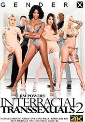 Interracial Transsexuals 2 | Межрасовые Транссексуалы 2 (2020) WEB-DL