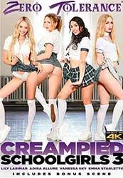 Creampied Schoolgirls 3 | Обконченные Школьницы 3 (2020) WEB-DL
