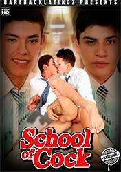 School of Cock   Школа Членов (2019) HD 1080p