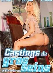Castings de gros seins | Кастинг Больших Сисек (2016) HD 720p