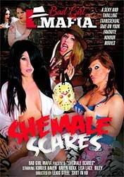 Shemale Scares | Пугающие Транссексуалы (2018) DVDRip