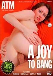 A Joy To Bang | Наслаждение Сексом (2021) WEB-DL